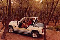 Renault 4 JP4